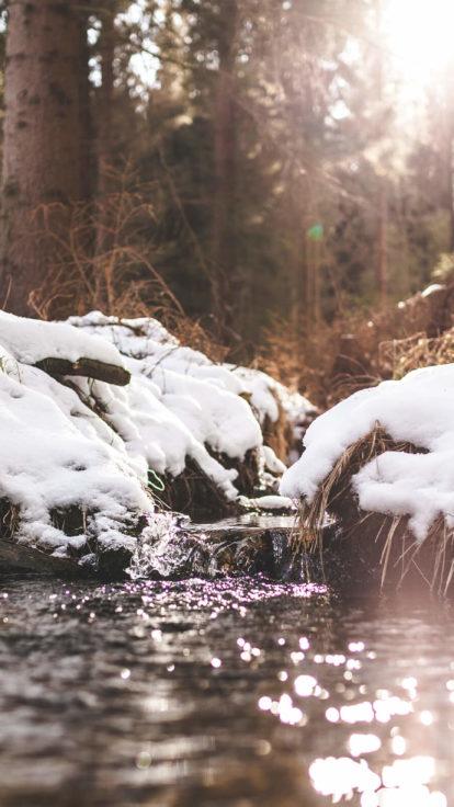 Trixi-Ferienpark-Winterurlaub-Winterwandern