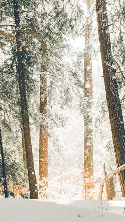 winter-angebot-header